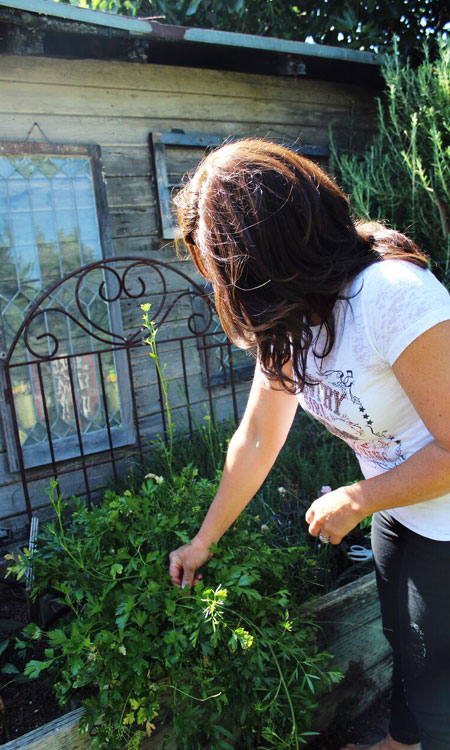 dinner parties tips picking cilantro