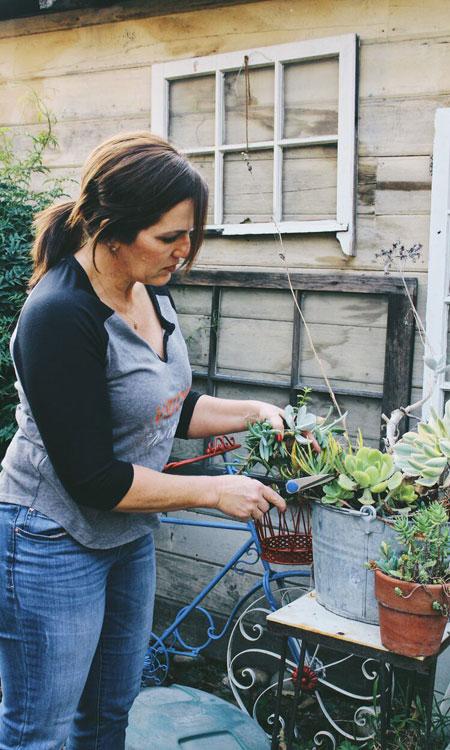 easy diy gift terry plants