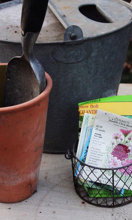 planting seeds trowel seeds