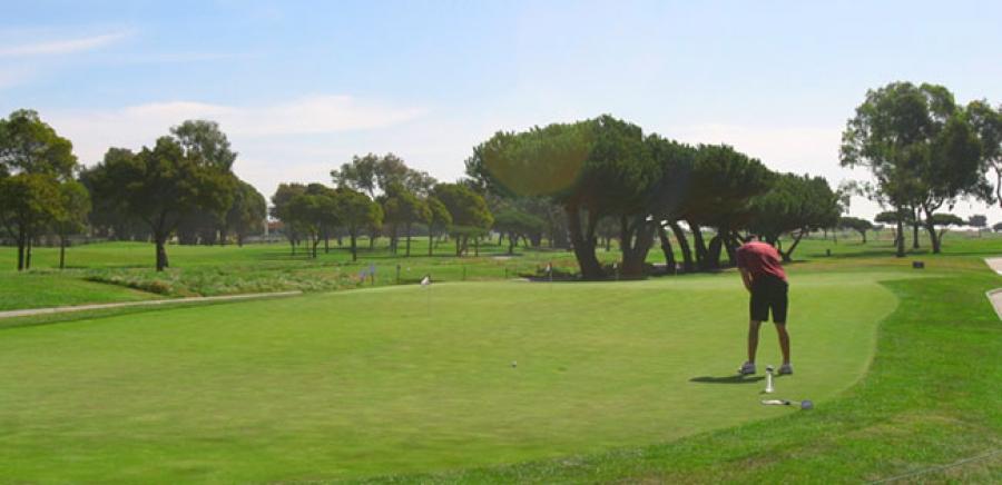 san leandro golf