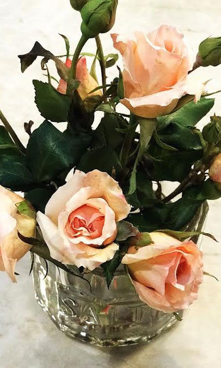springtime gardening roses
