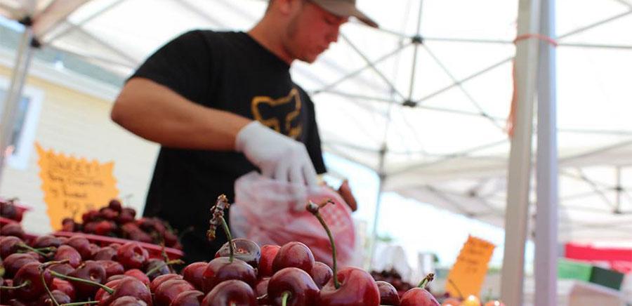 summer san leandro farmers market cherries